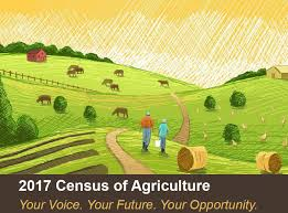 Census of Agriculture Graphic